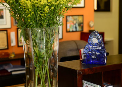 Nori's Eco Salon - Cool California Award
